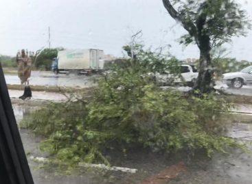 Chuva e ventos fortes causam transtornos aos moradores da capital