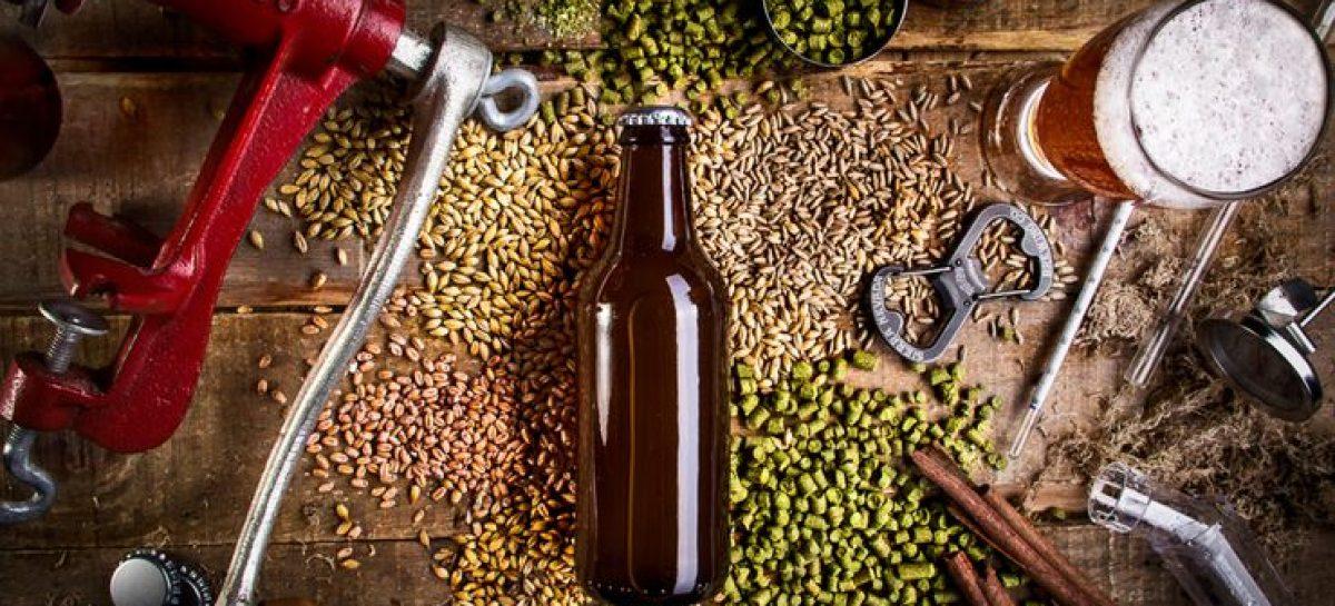 Produção de cerveja artesanal é tema de curso em Aracaju