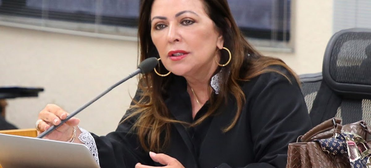 Conselheira promove encontro técnico sobre Controle Interno para 14 municípios