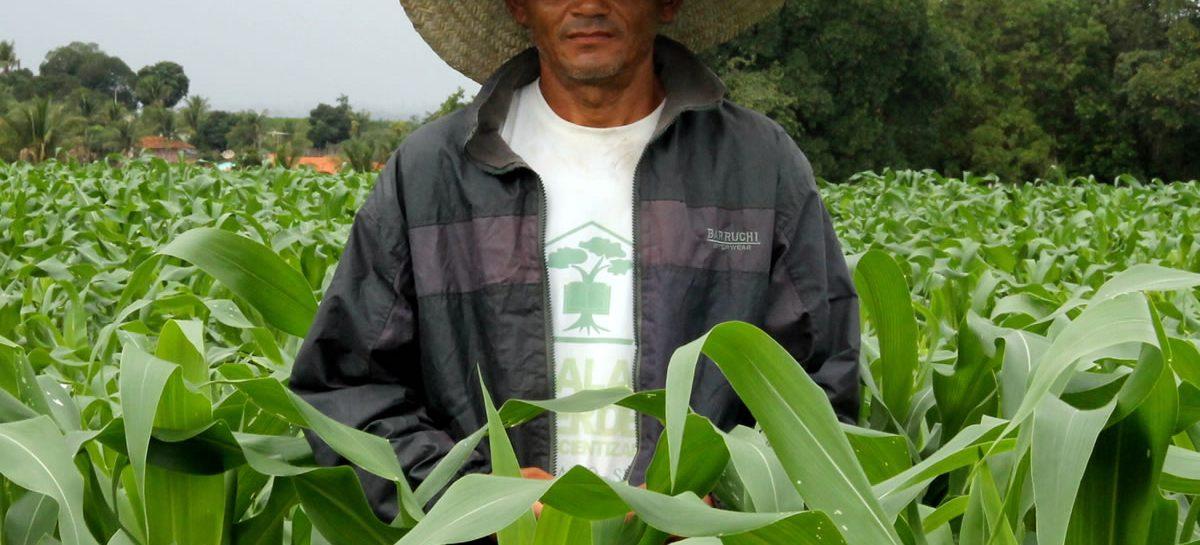 Ministério da Agricultura divulga municípios que receberão pagamentos do Garantia-Safra em março