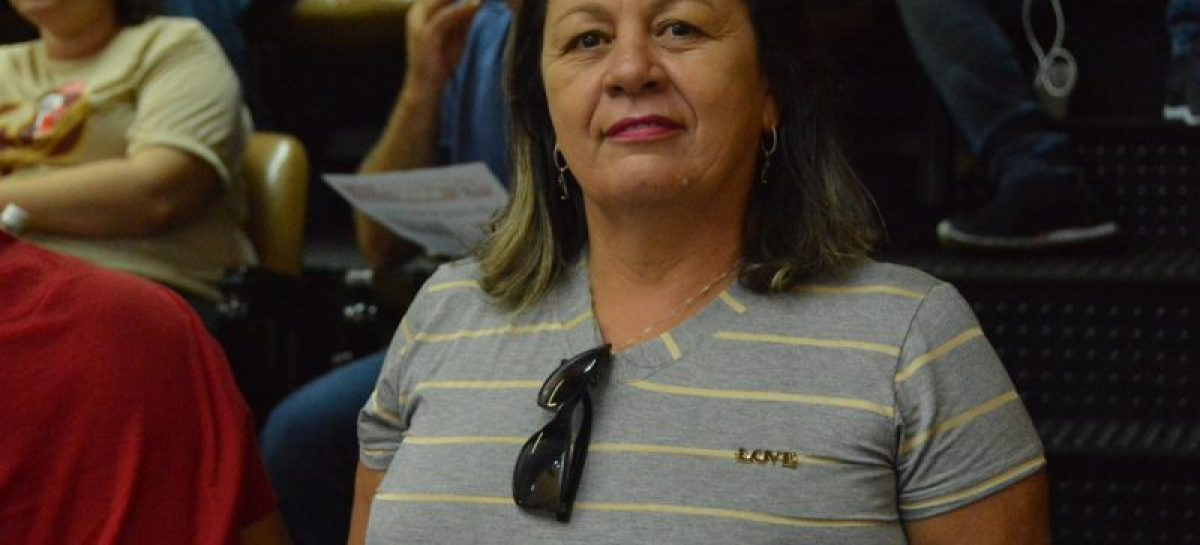 SINTESE busca apoio de deputados para cumprimento de lei