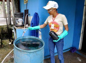 Governo orienta municípios a intensificarem combate ao Aedes Aegypti