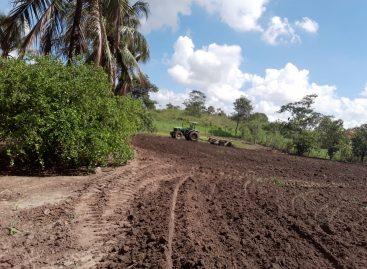 Prefeitura de Socorro atinge mais de 90% da área gradeada para o plantio de milho verde
