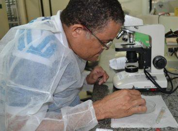 Secretaria de Saúde inicia trabalho de identificação de vírus do Aedes aegypti