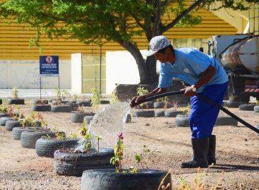 Prefeitura transforma ponto de descarte irregular com intervenção de paisagismo