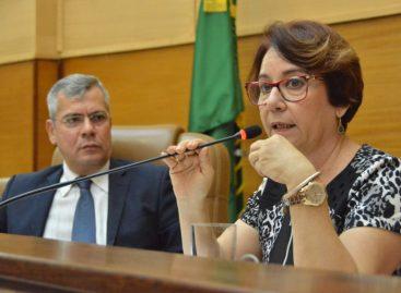 Sessão Especial aborda a realidade das bibliotecas públicas