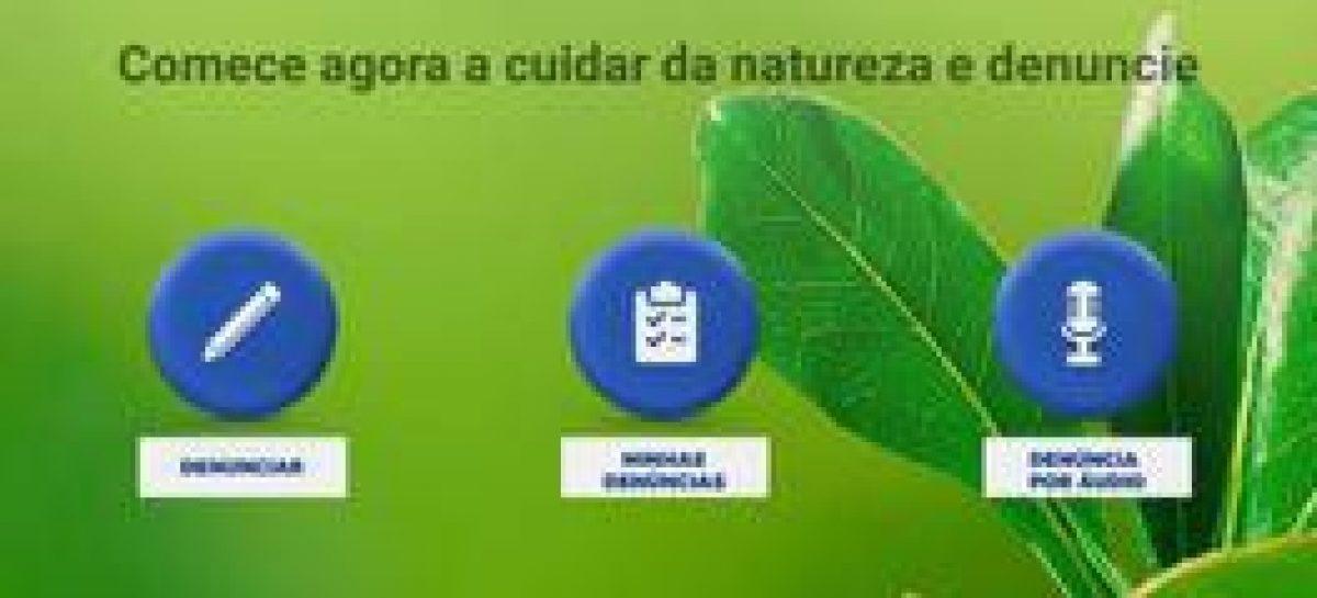 Governo lançará aplicativo de denúncia de crimes ambientais