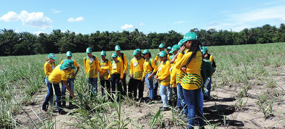 Senar/SE abre turmas de Aprendizagem Rural em Neópolis, Aracaju e Capela