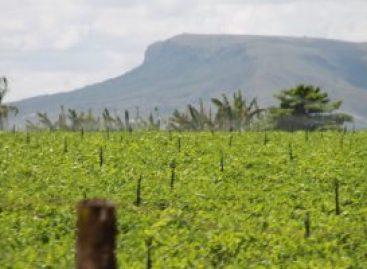Recarga de chuvas devolvem capacidade operacional de perímetros irrigados