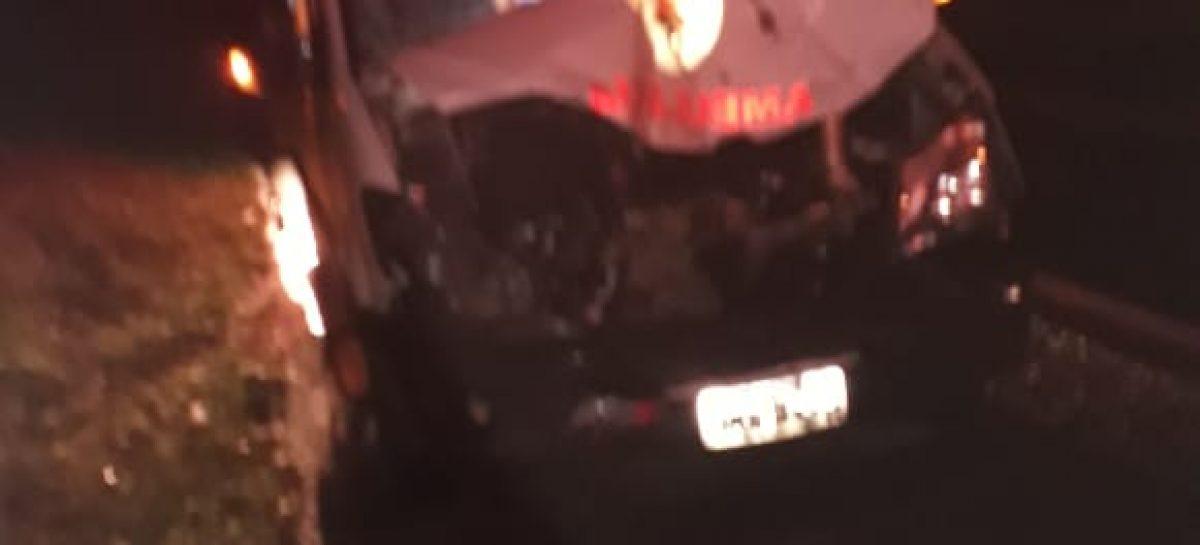 Ambulância do Samu colide com dois cavalos soltos na pista
