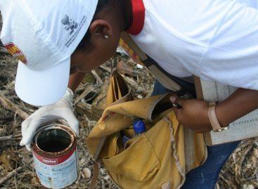 SES divulga calendário de atuação da Brigada Itinerante de Combate à Dengue