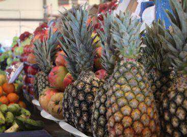 Prefeitura disponibiliza aos consumidores pesquisa comparativa de preços de hortifruti