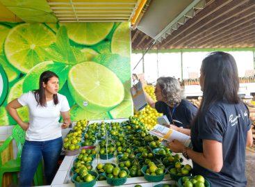 Sesc comemora Dia do Feirante com ações e serviços em Aracaju