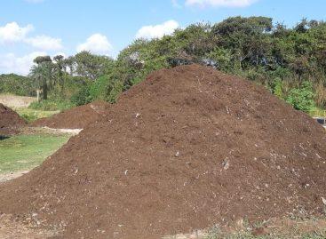 Conbasf visita empresas e acompanha processo de compostagem em recife