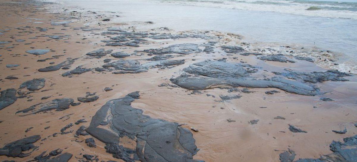 Sobe para 53 número de municípios atingidos por óleo no Nordeste