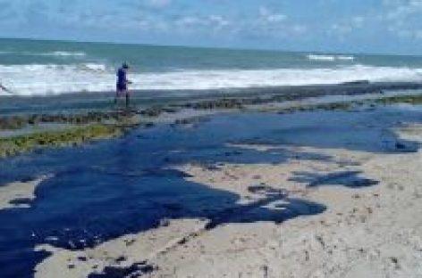 Deputados querem explicações do Ibama e da Petrobras sobre óleo nas praias do estado
