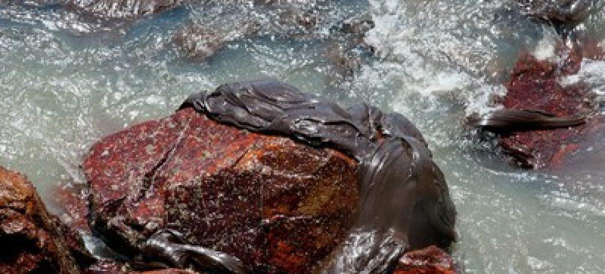 Peixe Inteligente: MPF aguarda explicações de secretário de Aquicultura e Pesca