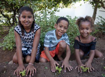 Mosaic Fertilizantes inaugura mais uma horta escolar em Rosário do Catete