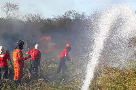 Corpo de Bombeiros atende mais de 1,5 mil chamados para combate a incêndios
