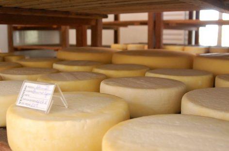 Assistência técnica: Senar abre inscrição para queijeiros do Alto Sertão