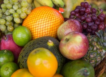 Federação da Agricultura pede aos prefeitos atenção à cadeia do agronegócio