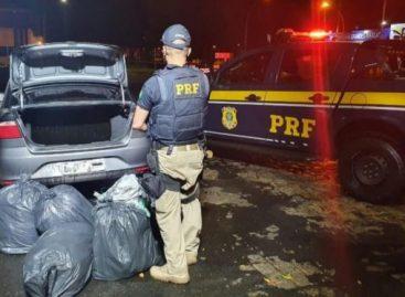 Casal é preso com 45kg de maconha em veículo na BR-235 em Itabaiana