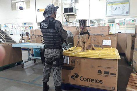 Equipe da CIPCães encontra tablete de droga em encomenda postada via Correios