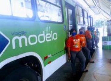 Setransp e empresas de ônibus realizam ações contínuas em combate ao Coronavírus