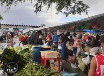 Pandemia: centenas de pessoas vão ao Ceasa em Aracaju em busca de milho para o São João