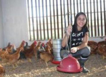 Parceria entre secretarias da Agricultura e Educação levará cursos para a juventude rural