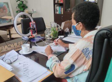Lei Aldir Blanc: Presidente da Funcap participa de Live promovida pela OAB Sergipe