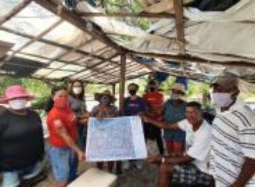 Cultura da mangaba em Aracaju está em risco de extinção, diz CUT