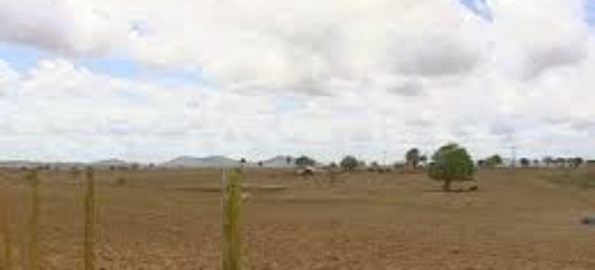 Defesa civil diz que número de municípios em situação de emergência deve aumentar