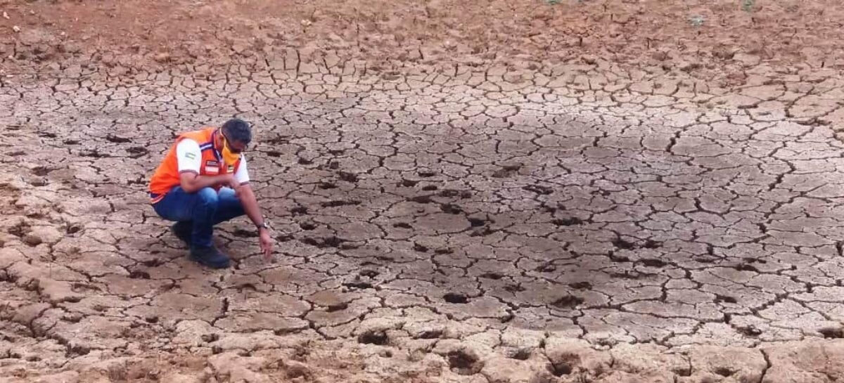 Governo adota ações emergenciais em municípios atingidos pela seca