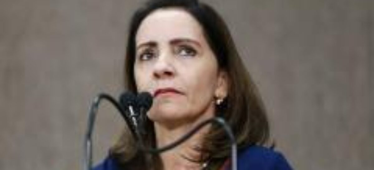 """""""Foram motivos funcionais que motivaram abstenção"""", afirma Emília"""