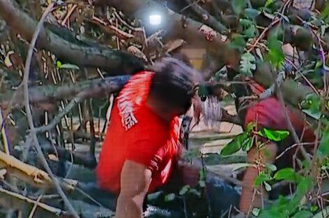Avião de pequeno porte cai no mangue no bairro Coroa do Meio, em Aracaju